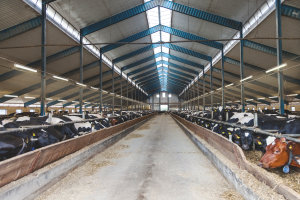 Damp Proof luminaires for industry and agriculture