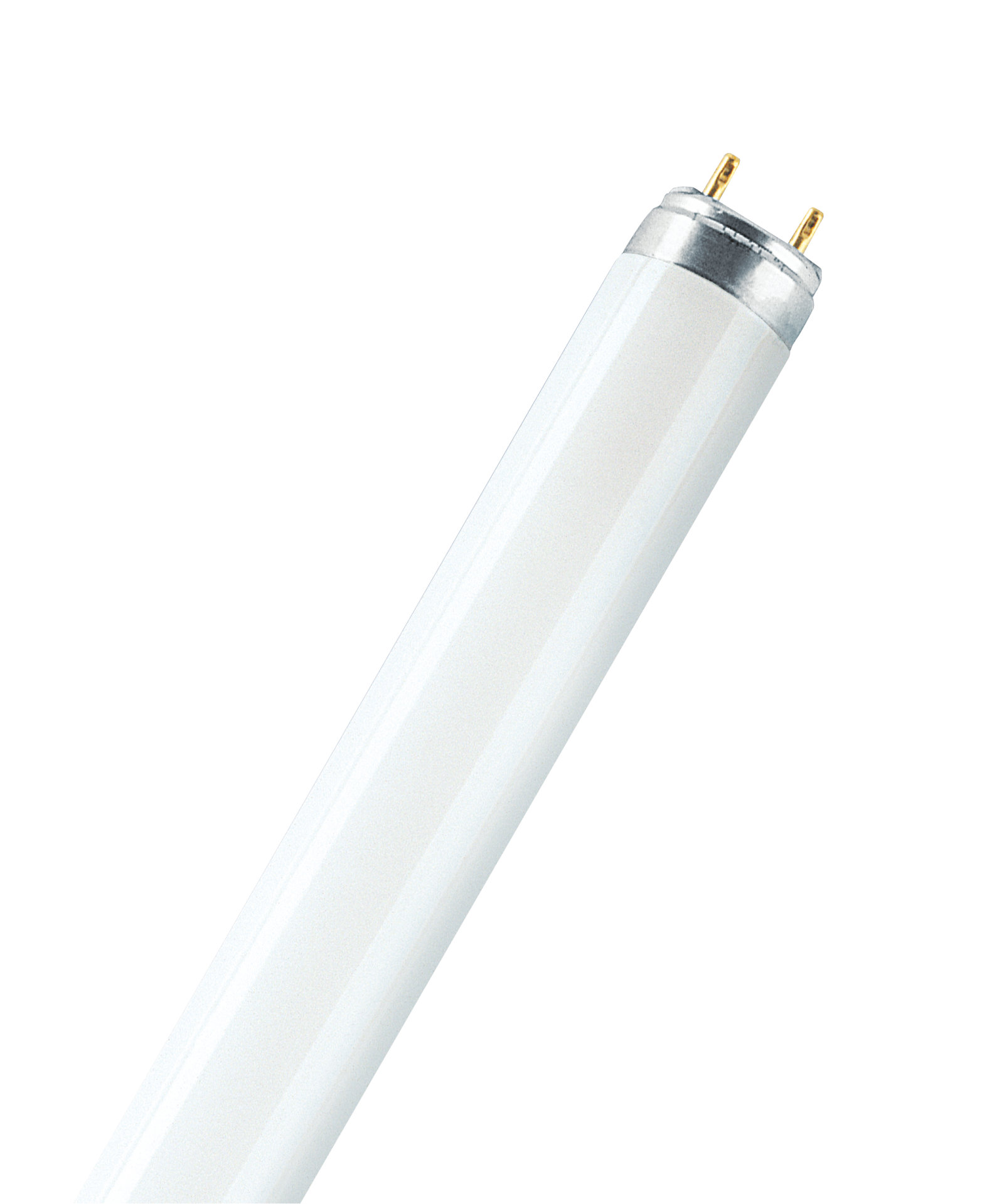 Fluorescent lamps T8 special versions